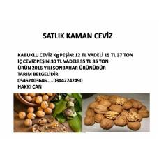 KAHRAMANMARAŞ SATLIK KAMAN CEVİZ